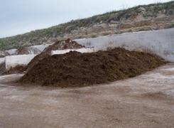 """El papel de la """"gallinaza"""" en el compost para el cultivo del champiñón"""