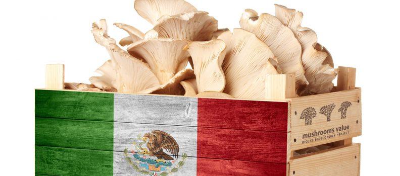Próxima misión comercial México + Cerca 2013